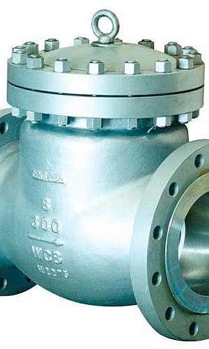 Válvula de retenção aço carbono