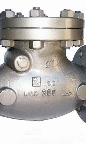 Válvula de retenção waffer fofo